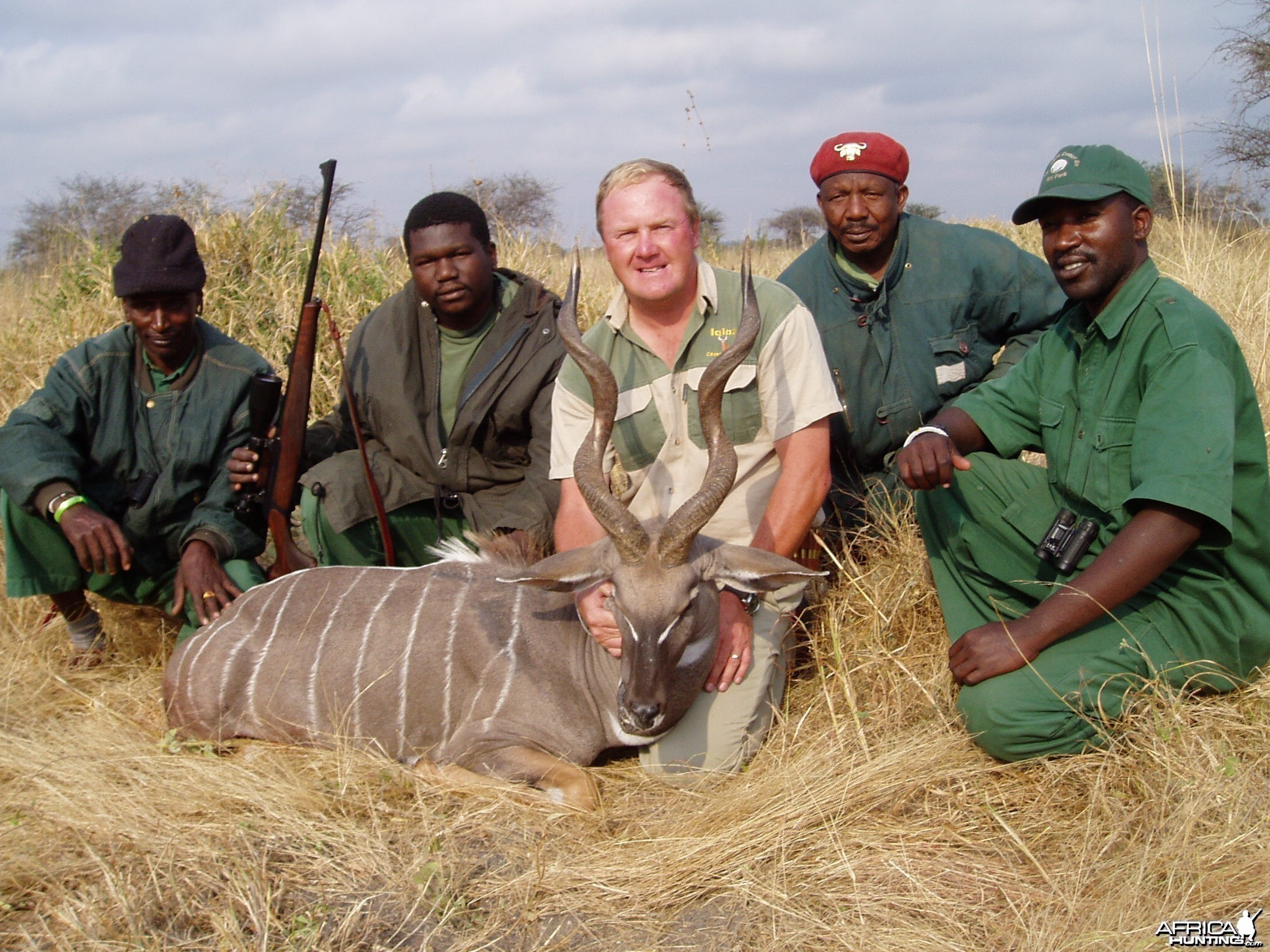 Nice lesser kudu
