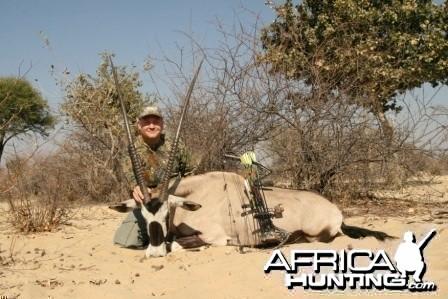 43 inch gemsbok cow