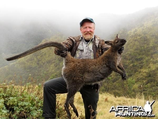 Varmint shooting-Wallaby