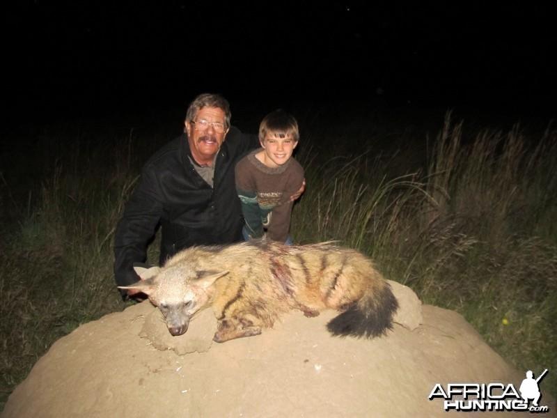 Umdende Hunting Safaris Aardwolf