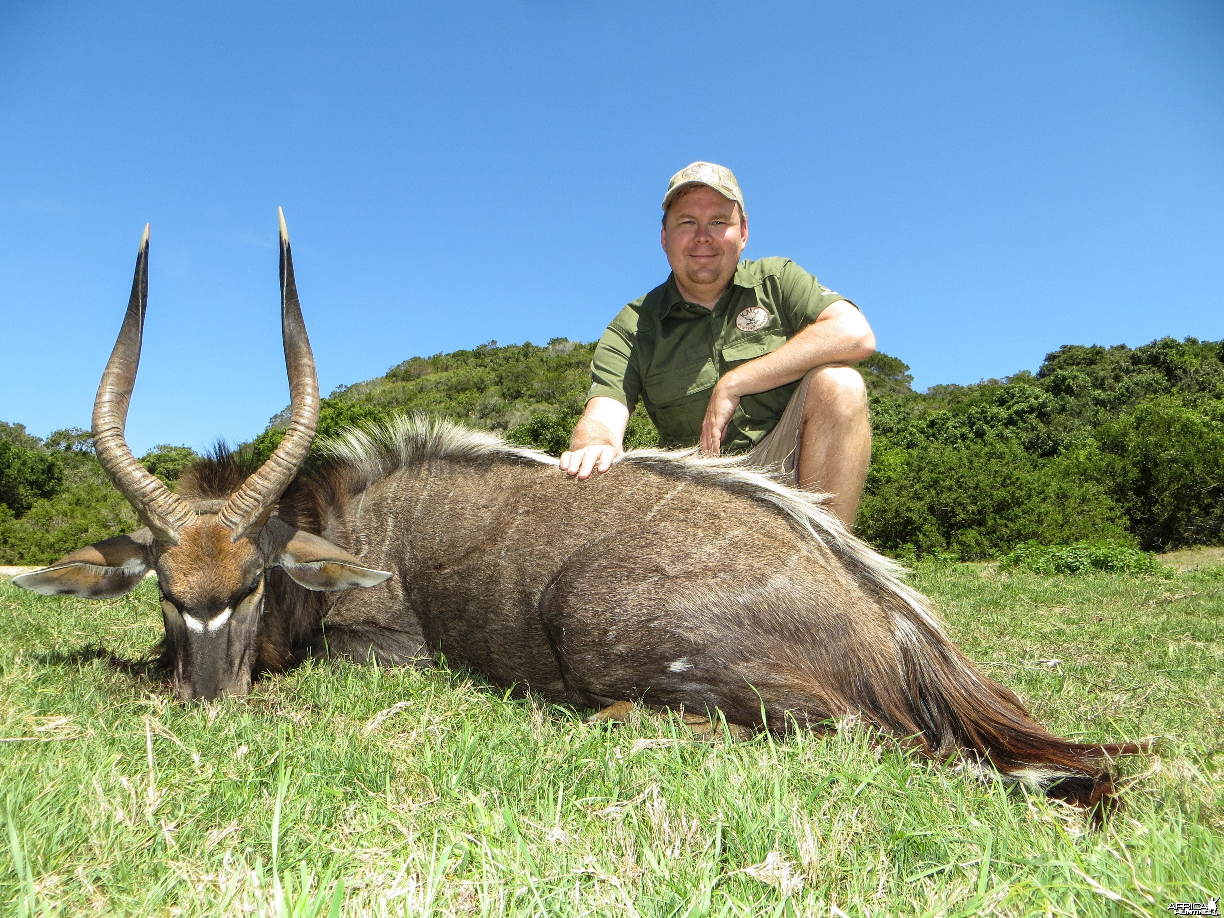 Nyala Eastern Cape