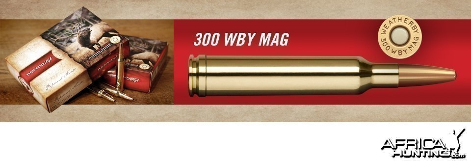 The .300 Weatherby Magnum