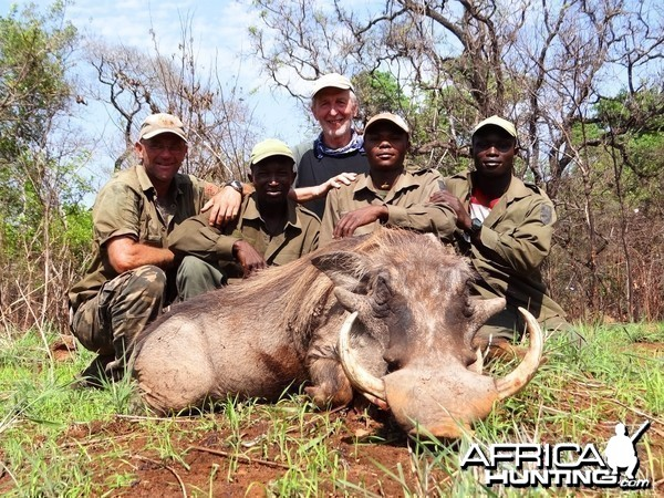 Big warthog