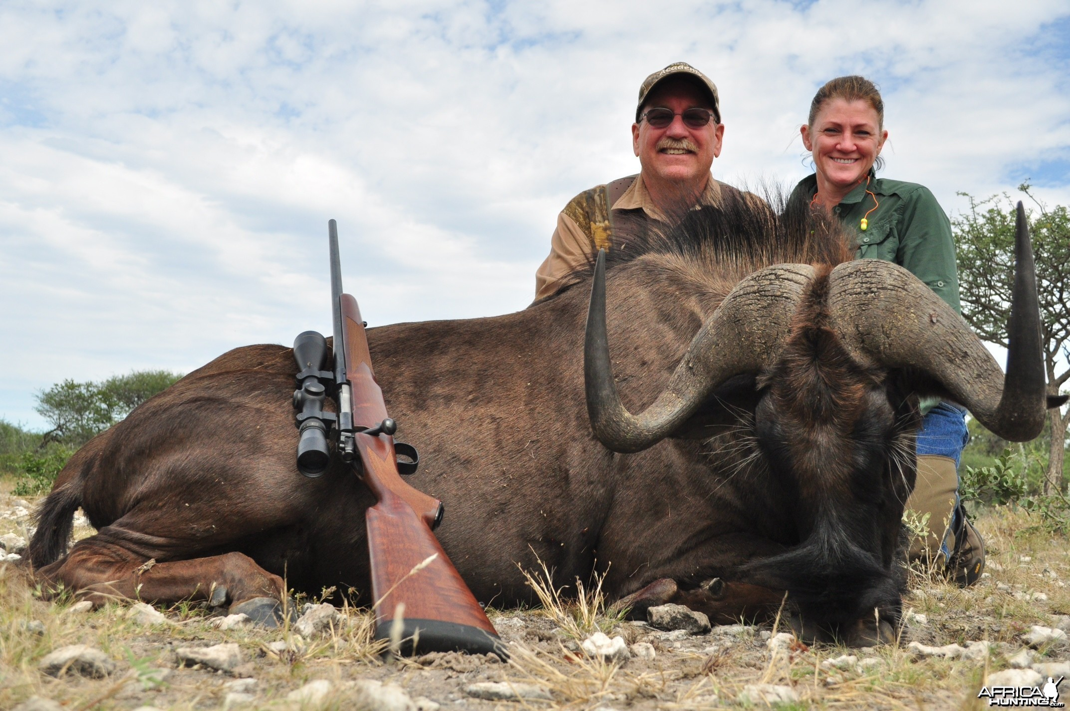 2014 Black Wildebeest