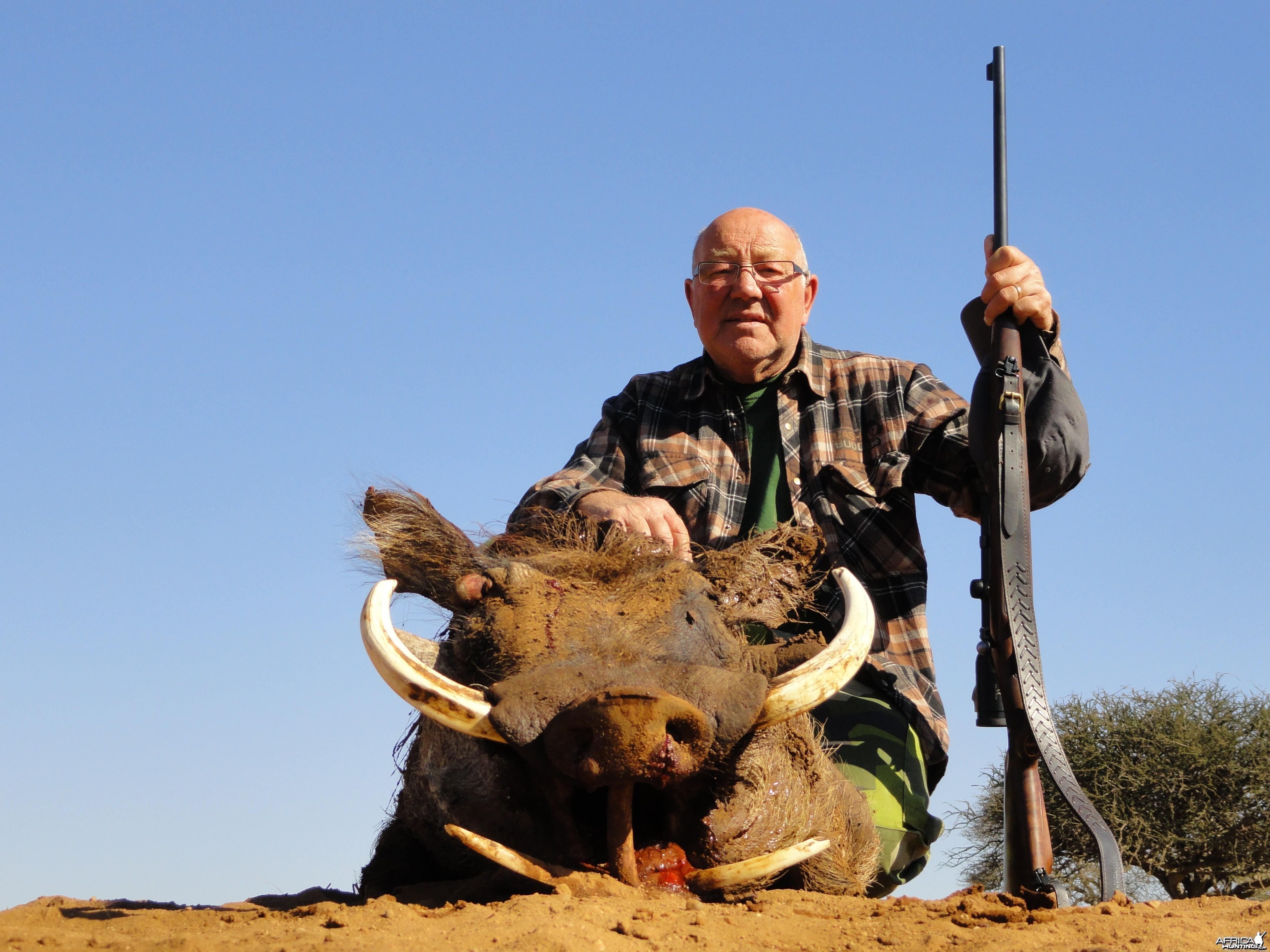 Warthog ~ Limpopo Valley, RSA