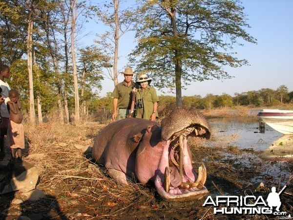 Hippo shot in Mozambique
