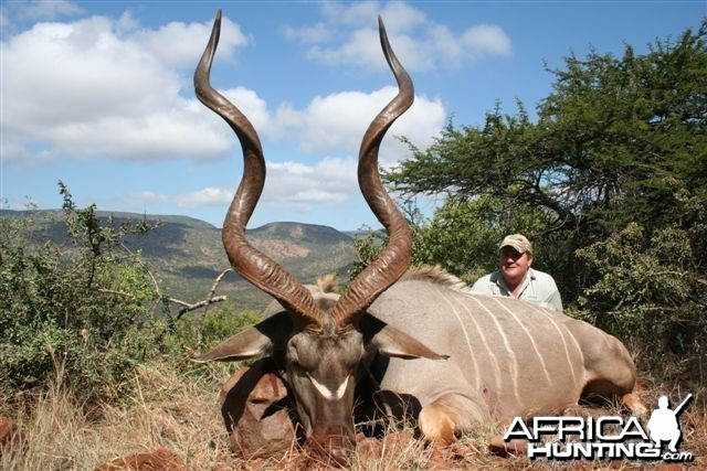 Another great Soutpansberg Mountain Kudu