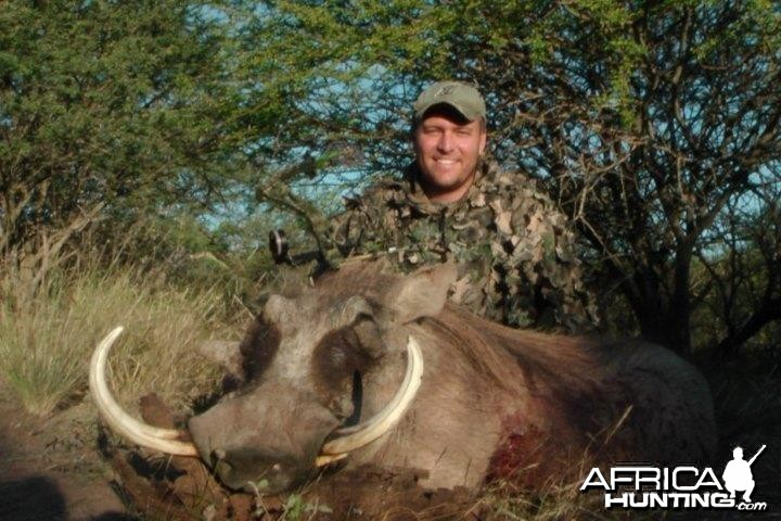 16 1/2 inch Warthog shot with Bow, walk and stalk