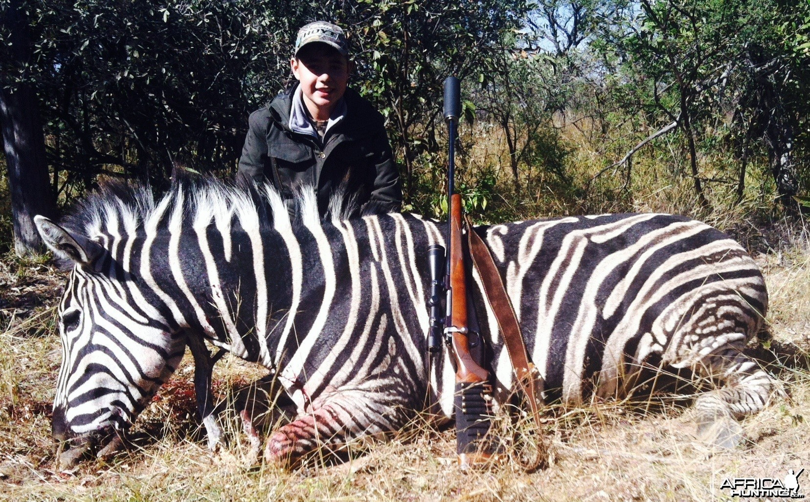 My Latest Hunt : Burchell's Zebra