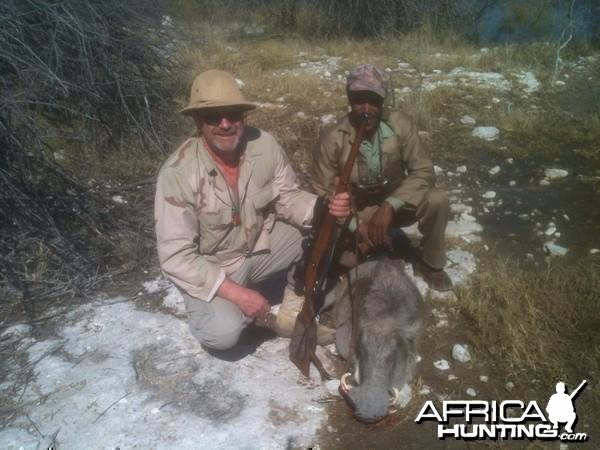 Cull warthog near Hochfeld Namibia
