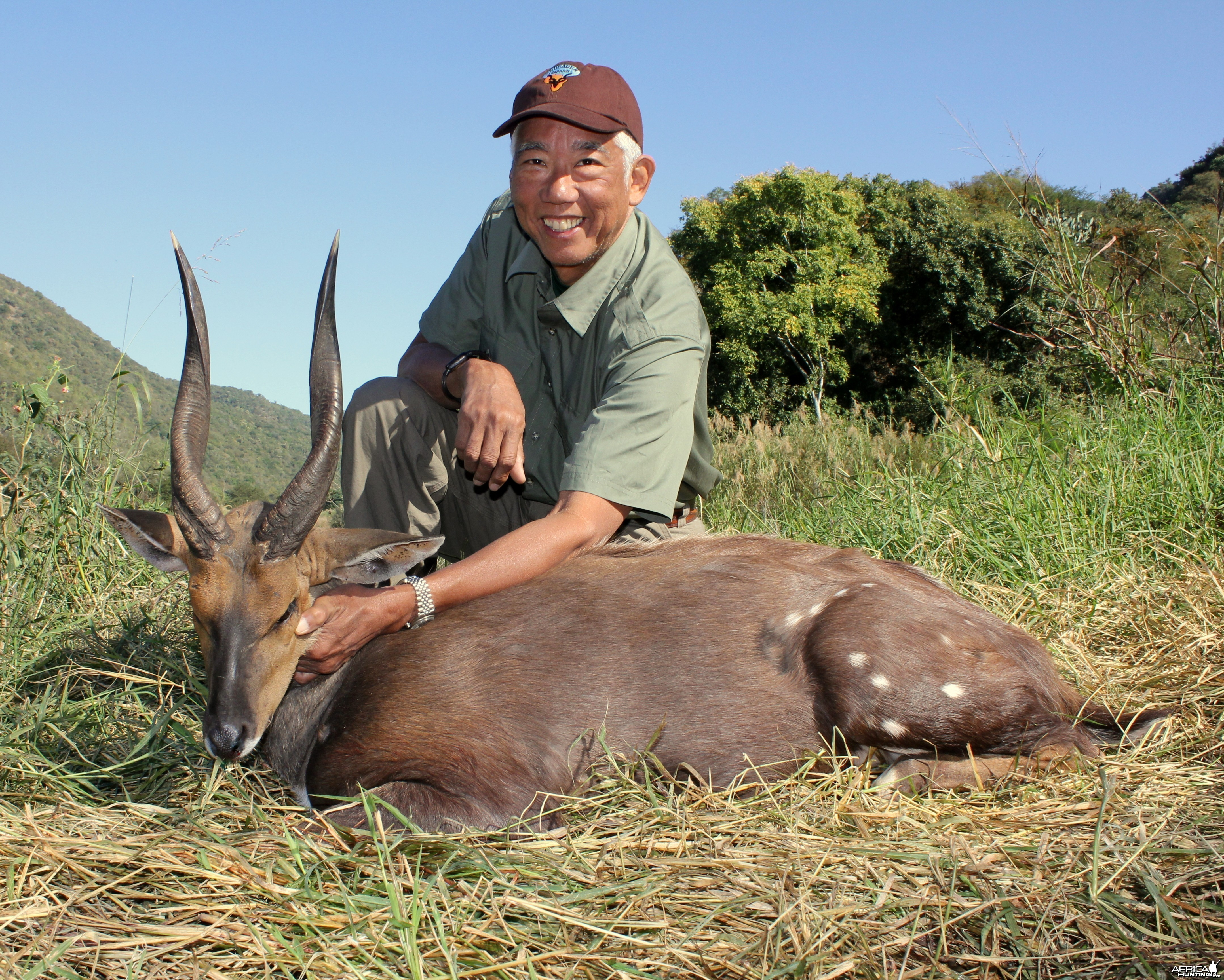 Cape bushbuck with Crusader Safaris