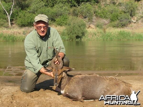 Bushbuck Zululand