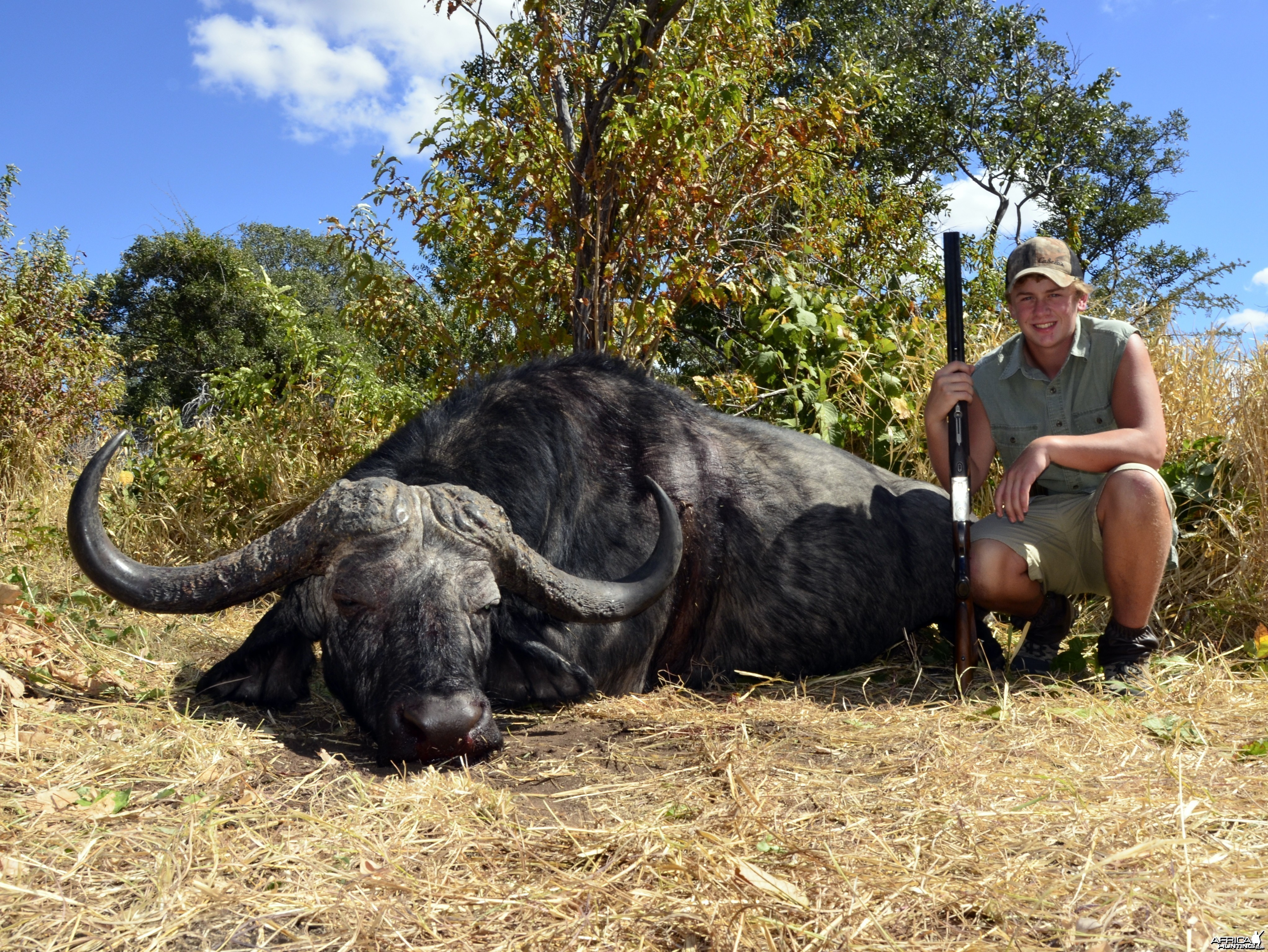 Hunter's Second Buffalo