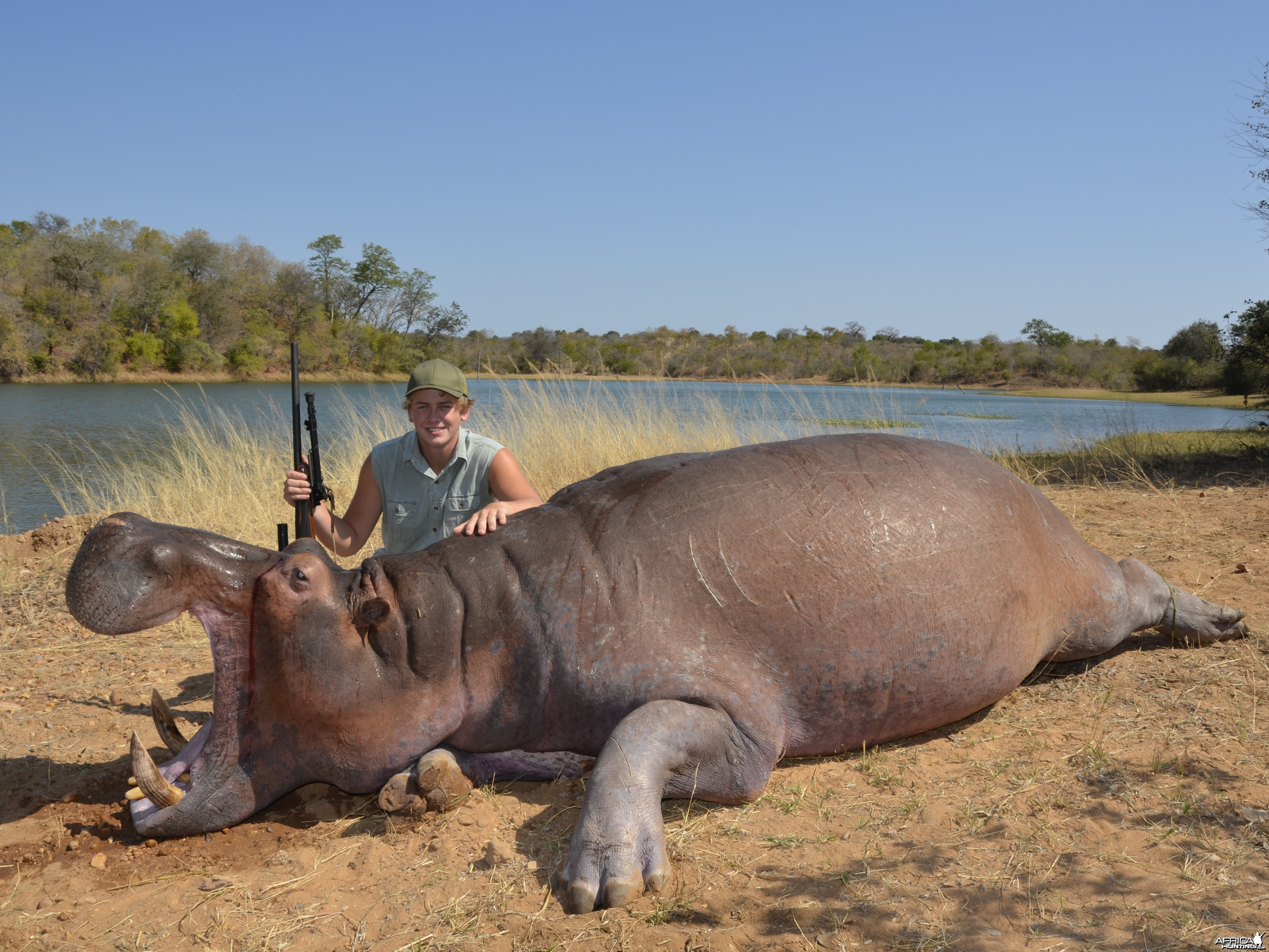 Hunter's Hippo