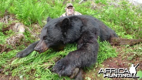 British Columbia Black Bear Hunt