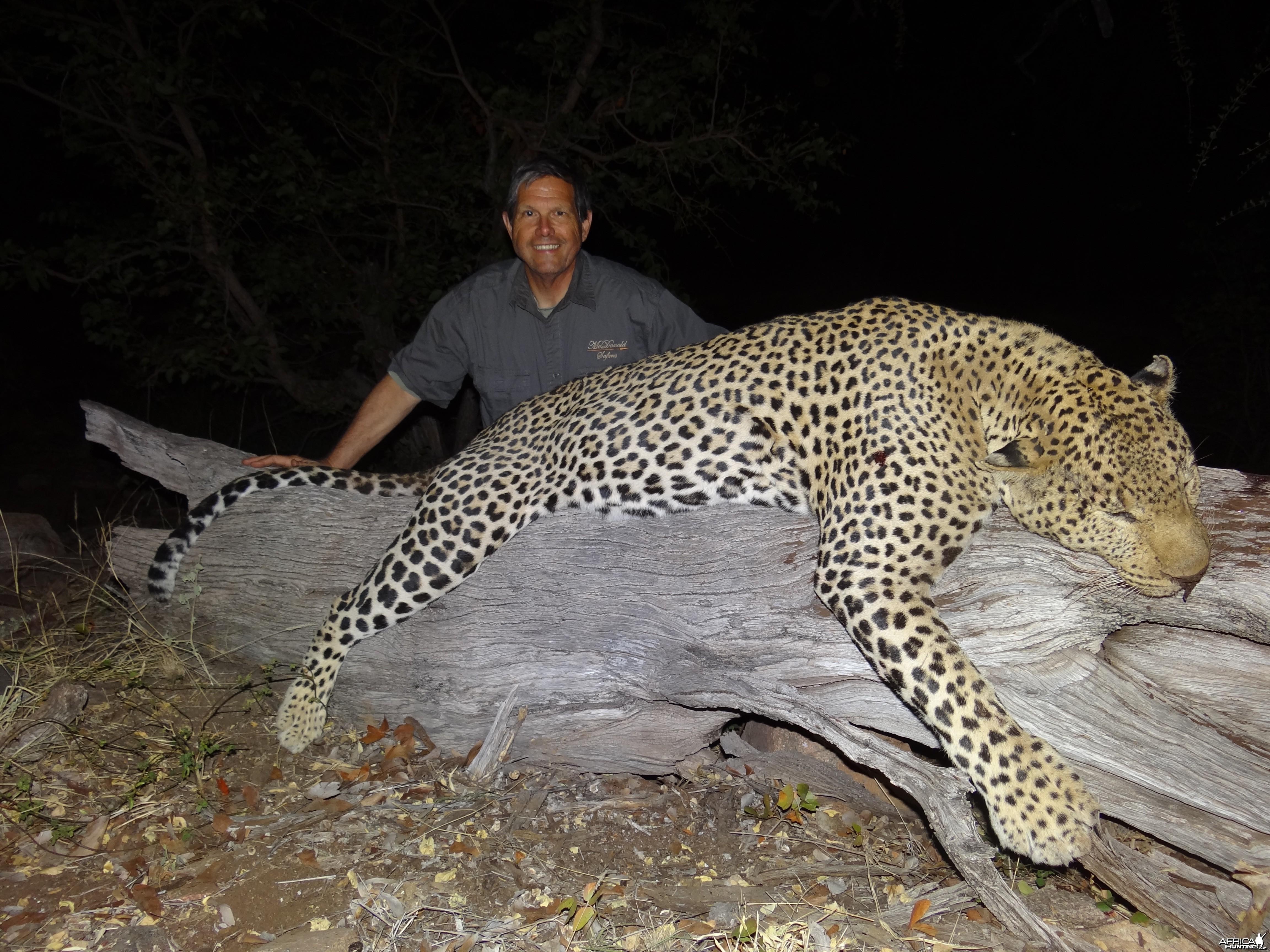 leopard ~ Limpopo Province, RSA