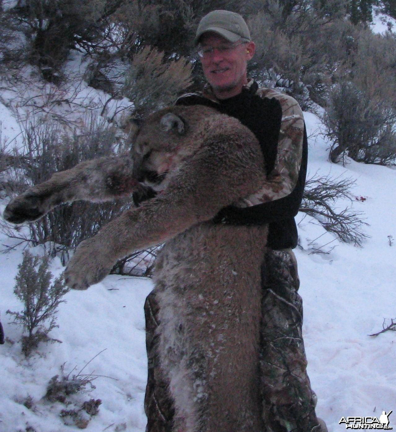 Utah Cougar Hunts