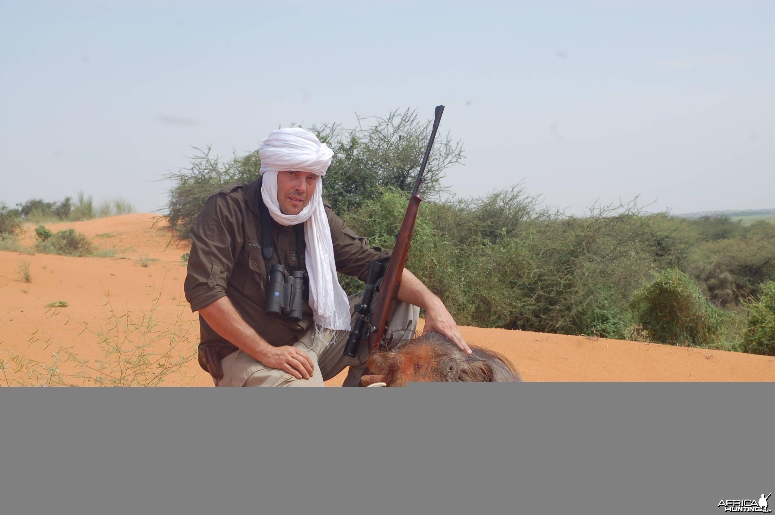 Hunting Warthog in Mauritania, Africa