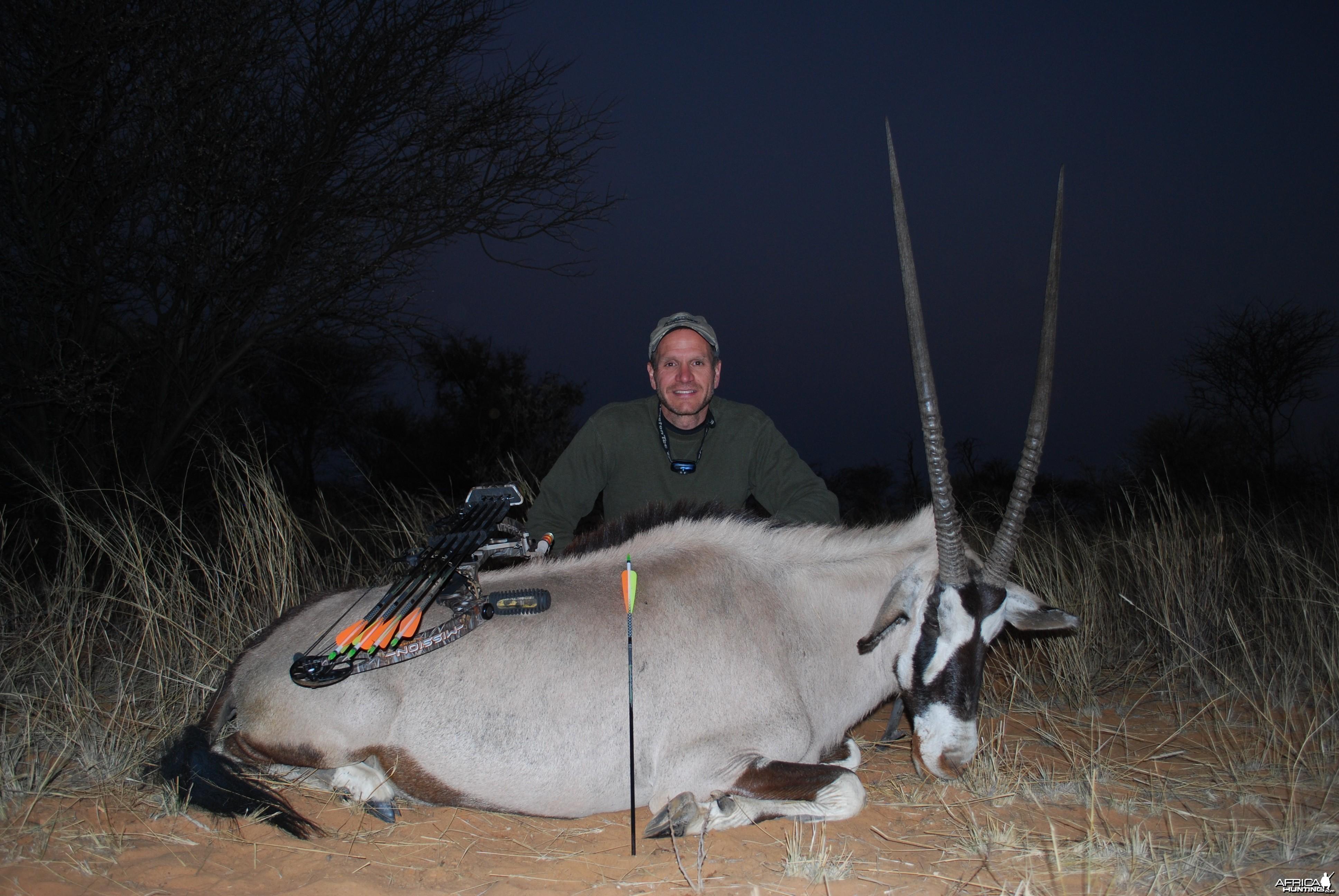 Gemsbok cow