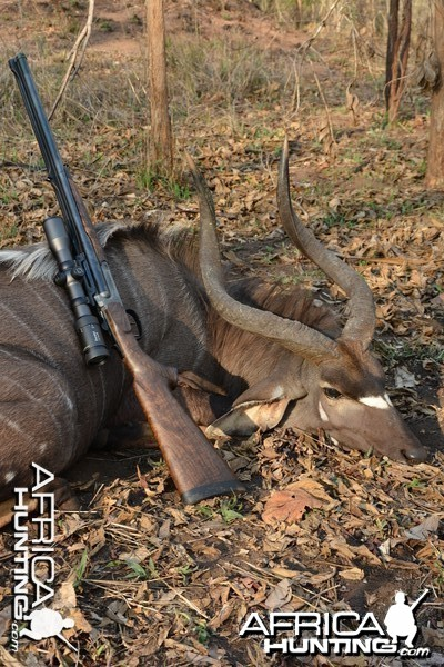 Nyala and S2 with 30'06 tubes