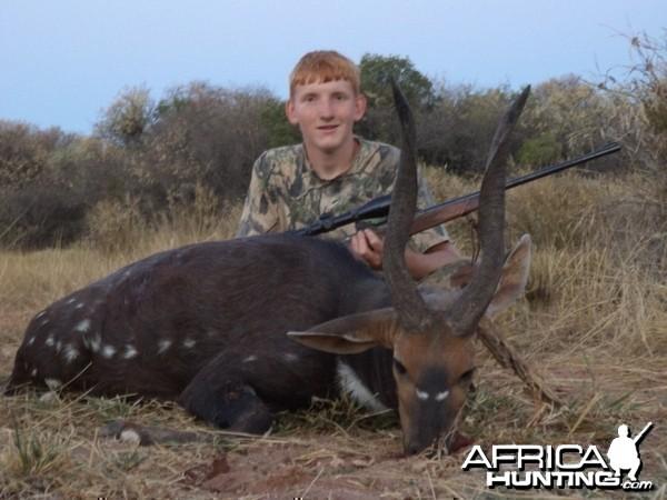 """18"""" Black Bushbuck shot at King'sKloof."""