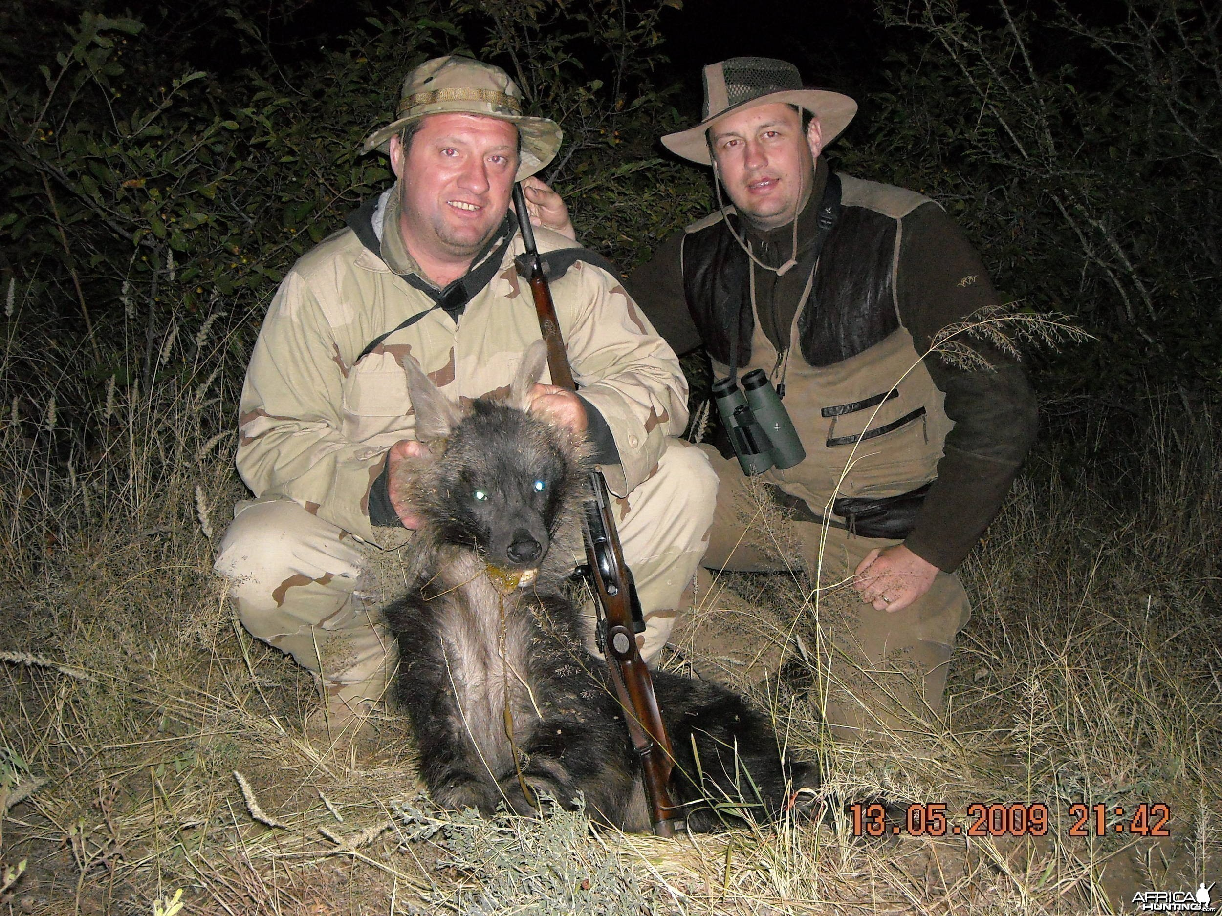 Hunting Brown Hyena - Borris &  Jaaka Slovenia