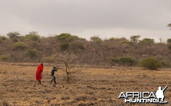 Plains game hunting, Tanzania