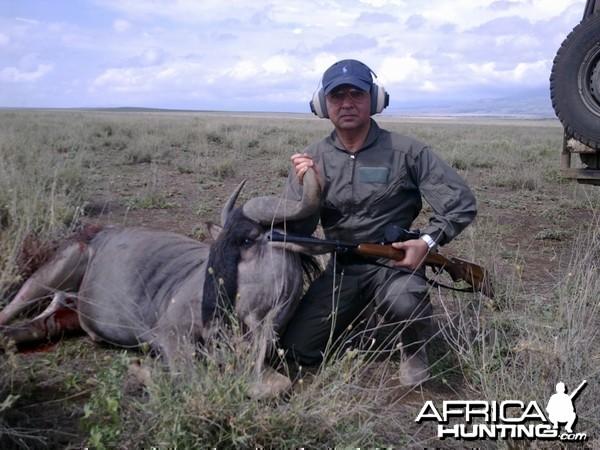 Wildebeest Shot at Masailand, Tanzania