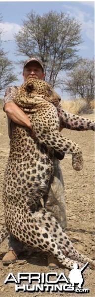 Great Leopard taken in Namibia