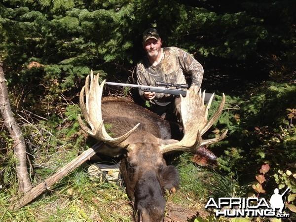 Idaho Shiras Moose