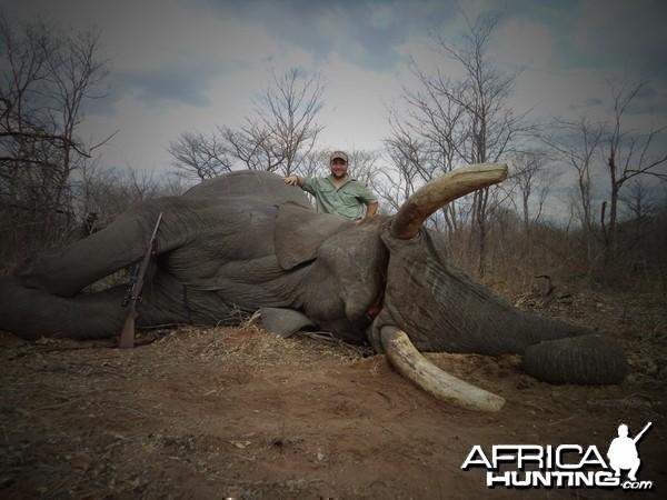 72x68 pounds Elephant Zimbabwe