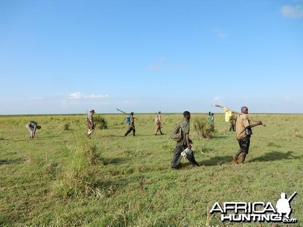 Zambezi Delta march to the birds