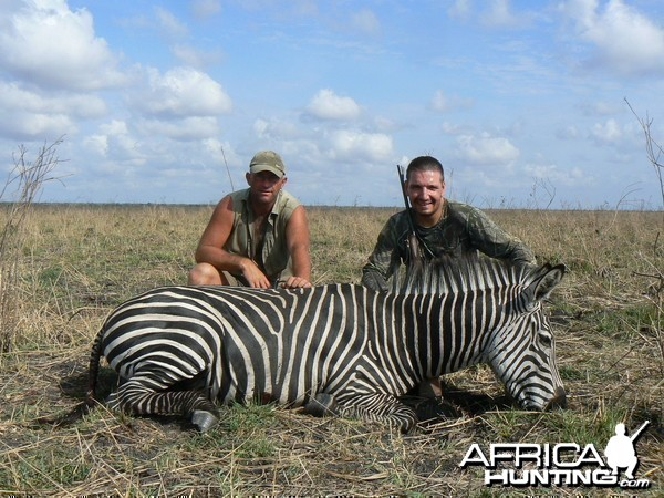 Tanzania. Zebra stallion