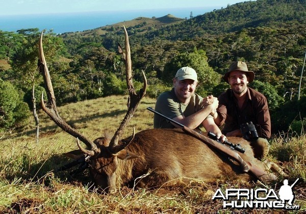 "A 37 inches rusa deer hunted with ""le chasseur mauricien ltd"" in"