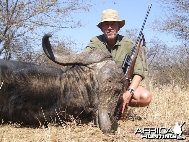 Buffalo 2015 Bulls with Spear safaris