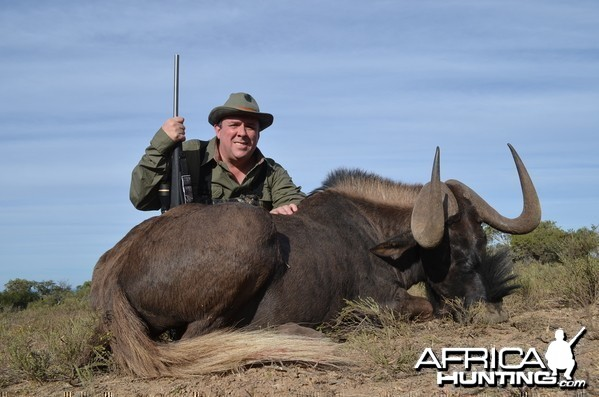 Black Wildebeest KMG Hunting Safaris