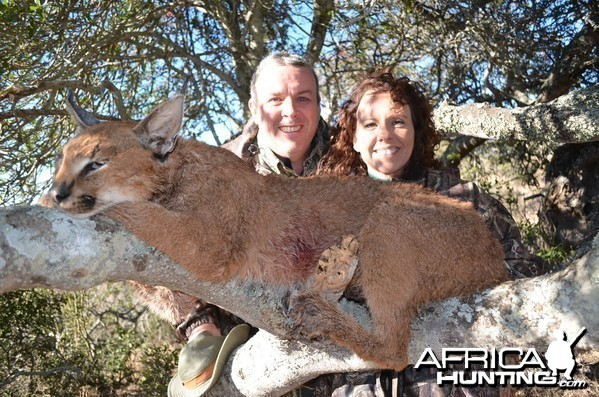 Caracal KMG Hunting Safaris