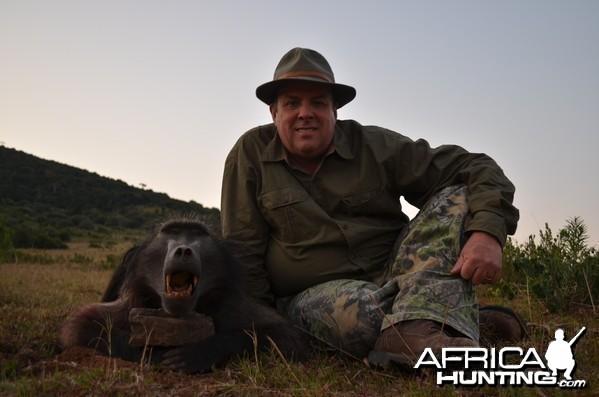 Baboon KMG Hunting Safaris