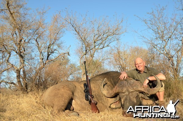 Buffalo KMG Hunting Safaris