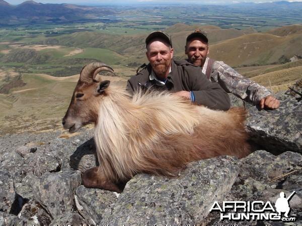 November Tahr hunting in New Zealand