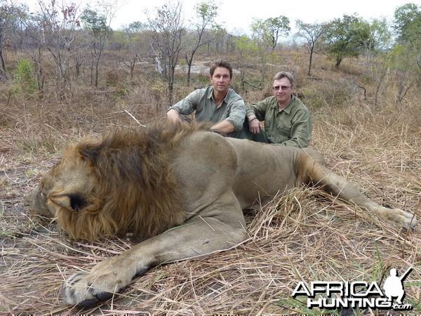 Lion Hunted in Tanzania Selous