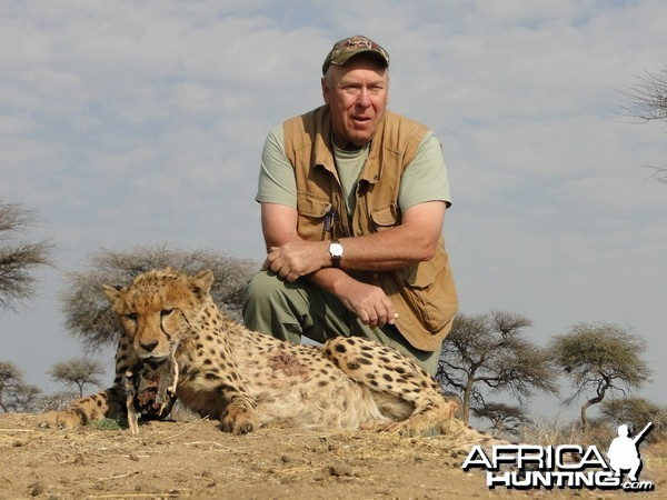 Hunting Cheetah at Ozondjahe Hunting Safaris in Namibia