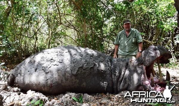 Selous Hippo 2014