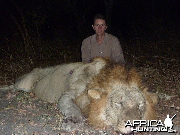 Hunting Lion Selous Tanzania