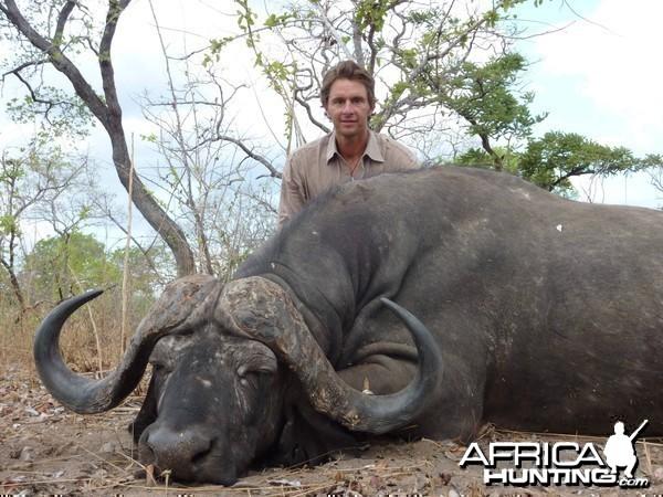 Buffalo Tanzania