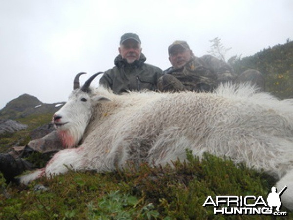 Hunting Mountain Goat in Alaska