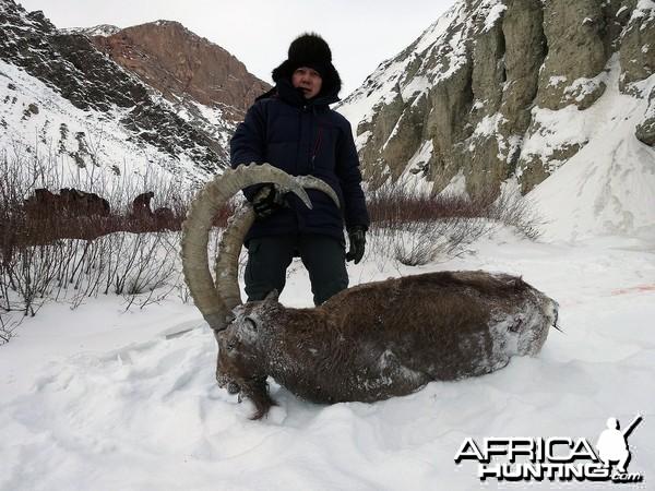 Kyrgyzstan Ibex 2015