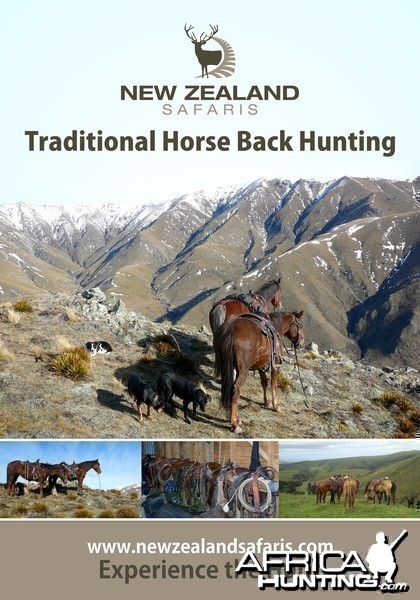Horse back hunting New Zealand