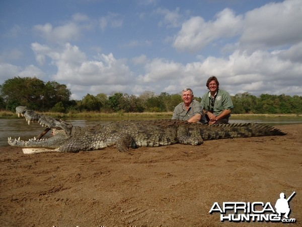 Crocodile Tanzania