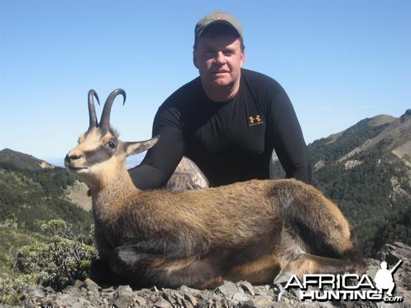 Chamois Hunt New Zealand